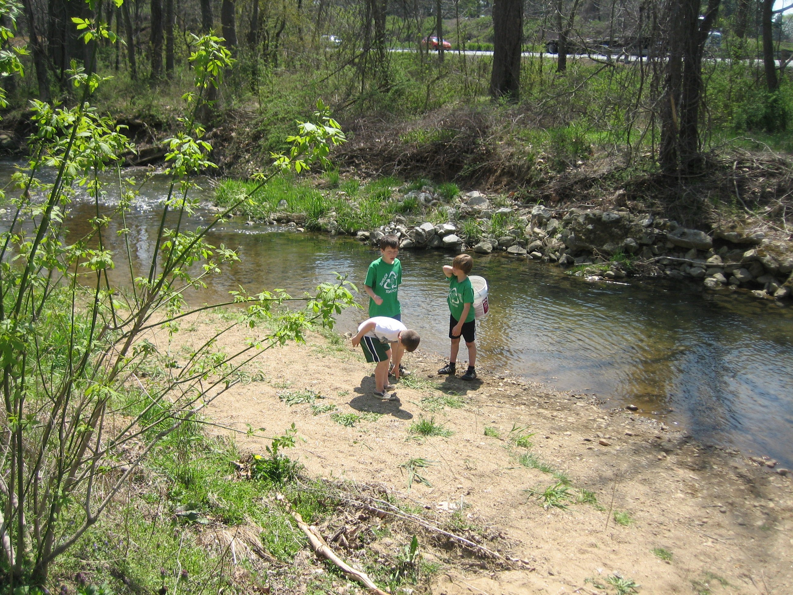 Using the stream to water the newly planted trees